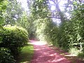 Red pathway - geograph.org.uk - 3052642.jpg