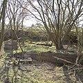 Remains of Tillietudlem station building - geograph.org.uk - 392603.jpg