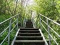 Rerik Steilkueste Treppe 2010-05-17 034.jpg