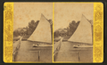 Residence of C.J. Crane, Mandarin, Fla, from Robert N. Dennis collection of stereoscopic views.png