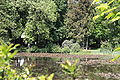 Rhododendronpark Bremen 20090513 281.JPG