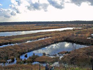 Risley Moss reservoir in the United Kingdom