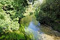 River Itchen, Itchen Stoke - geograph.org.uk - 951146.jpg
