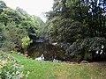 River Vyrnwy below Dolanog - geograph.org.uk - 559093.jpg