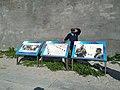 Robben Island-Robbeneiland (80).jpg