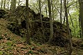 Rock in nature reserve Skocicky hrad in spring 2013.JPG