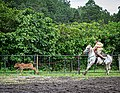 Rodeo Event Calf Roping 03.jpg