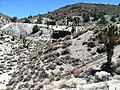 Rosemalis Mine surface works, looking S, Esmeralda Co., NV - panoramio.jpg