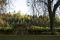 Rosenberg - panoramio.jpg