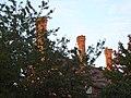 Row of chimneys - geograph.org.uk - 976411.jpg