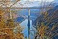 Ruden Eis Eisenbahnbruecke ueber die Drau 01012011 205.jpg