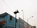 Rumata Stunts Caida Altura 1.jpg