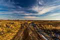 Rybnovsky District, Ryazan Oblast, Russia - panoramio (112).jpg