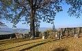 Sękowa, cmentarz wojenny nr 80 (HB11).jpg