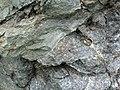 Sandorite intrusive contact with country rock (Sandor Dike, Neoarchean, 2.703 Ga; Route 17 roadcut northeast of Wasp Lake & north of Wawa, Ontario, Canada) 5 (48342399422).jpg