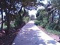 Santa Maria and Bocaue area - panoramio (5).jpg
