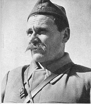 Sava Kovačević - Image: Savo Kovačević