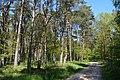 Schleswig-Holstein, Bark, Naturschutzgebiet 30 NIK 4195.JPG