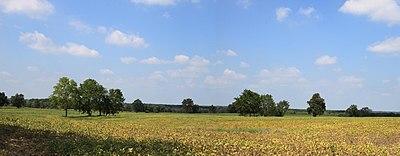 Paesaggio rurale del Michigan.