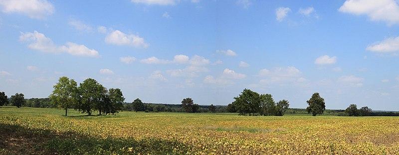 Paesaggio rurale del michigan for Disegni di cottage di campagna