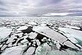 Sea Ice (19594354566).jpg