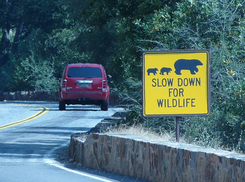 File:Sequoia National Park - Slow down for wildlife sign.JPG