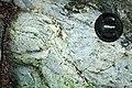 Serpentinite (East Dover Ultramafic Body, Ordovician; Adams Brook, east of East Dover, Vermont, USA) 8.jpg