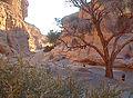 Sesriem-Canyon.jpg