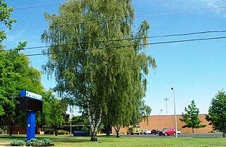 Sheridan High School (Oregon) Public school in Sheridan, Yamhill County, Oregon, United States