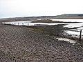 Shingle creeping landwards - geograph.org.uk - 1181057.jpg