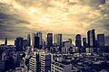 Shinjuku skyline - Sony A7R (12499338274).jpg