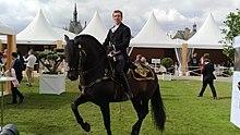 Chantilly Arts Amp Elegance Richard Mille 2017 Wikip 233 Dia