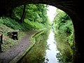 Shropshire Union Canal south of Gnosall, Staffordshire - geograph.org.uk - 1386476.jpg