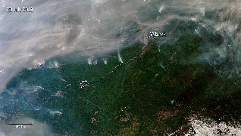 File:Siberian wildfires ESA19649507.jpeg