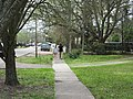 Sidewalk Mandeville Louisiana Walk.jpg