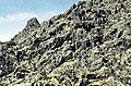 Sierra de Ayllón 1975 19.jpg