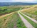 Single Track Road - geograph.org.uk - 558211.jpg