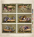 Six Flower Arrangements on One Sheet by Boston Public Library.jpg