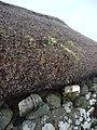 Skye Museum of Island Life 2018-08-27 by Marcok f09.jpg