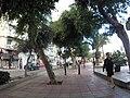Sliema, Malta - panoramio (14).jpg