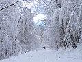 Sneh, Cemjata. Prešov 21 Slovakia 8.jpg