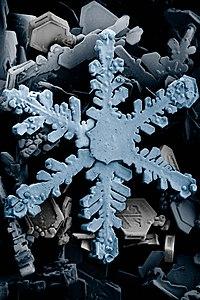 Blizzard (meteorologia)