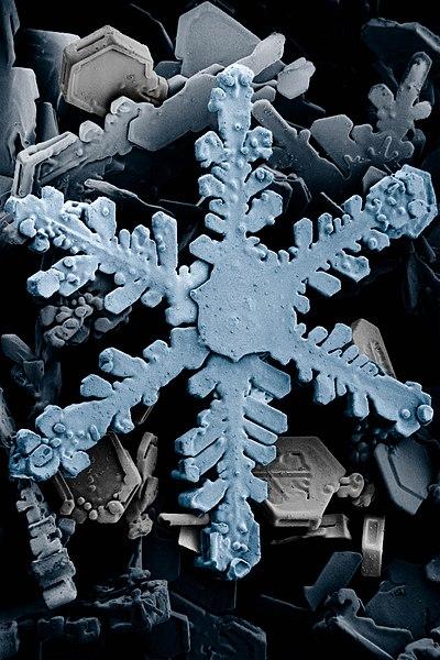 Agua en forma sólida: copo de nieve, coloreado para su mejor visualización.
