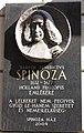Spinoza Dob15.jpg
