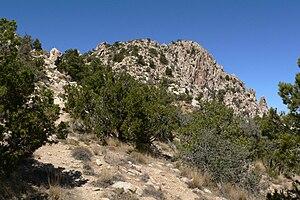 Spirit Mountain Wilderness - near the summit of Spirit Mountain