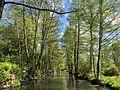 Spreewaldkanal near Lübbenau.jpg