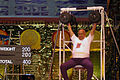 Sri Chinmoy 400lb Seated Press Lift.jpg
