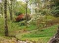 Stagshaw Garden, Ambleside - geograph.org.uk - 166358.jpg