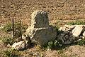 Staré vinohrady, vrchol 2.jpg