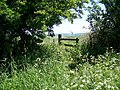 Stile and footpath, Prescombe Down - geograph.org.uk - 1334209.jpg